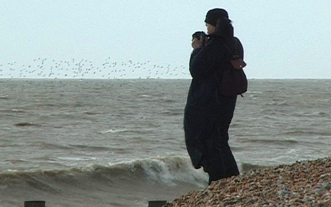 Charles Mapleston - Fay Godwin with sea and birds