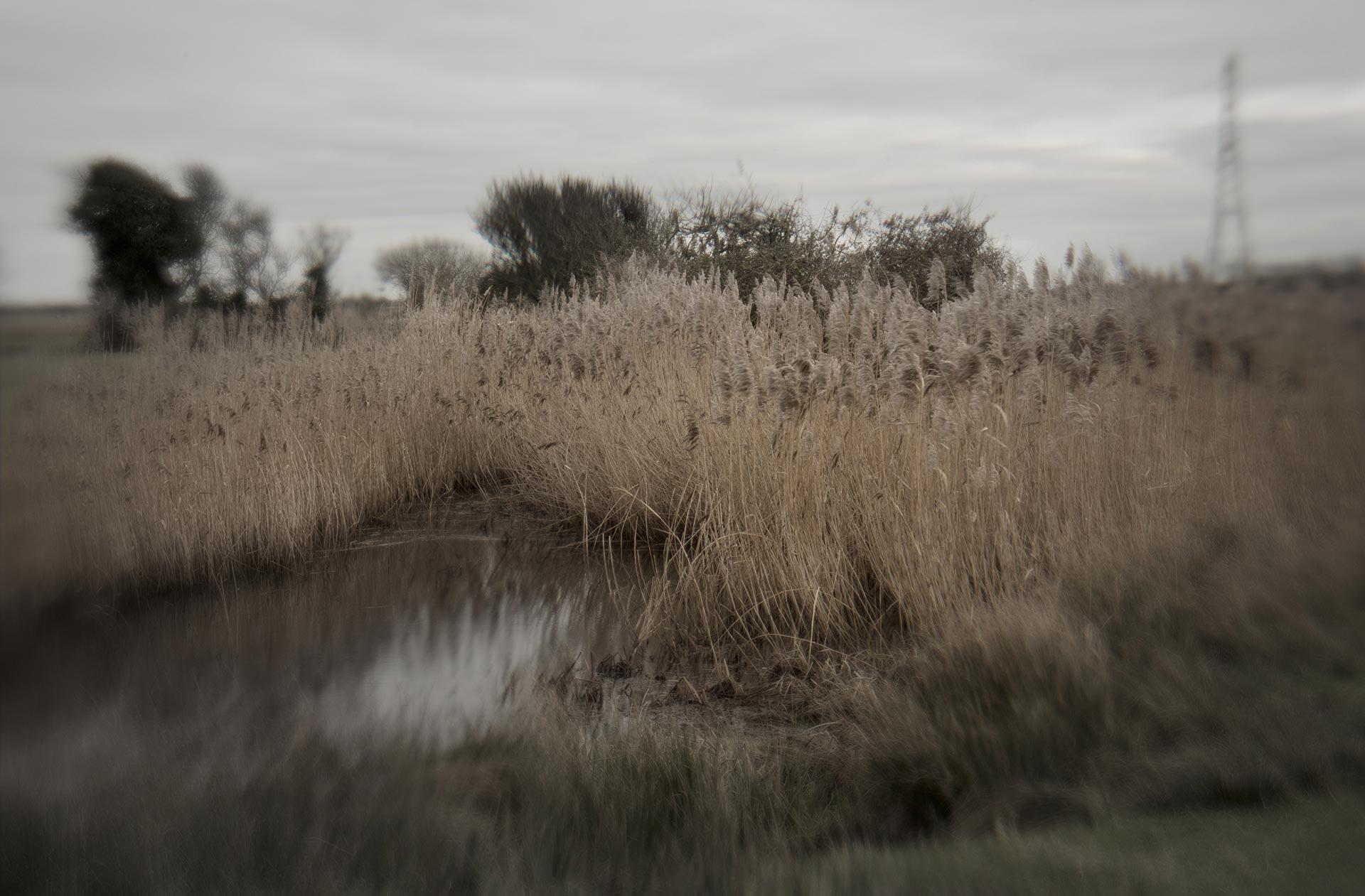 Giles Stokoe : Prehistoric Landscape
